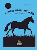 A Horse Named Thunder