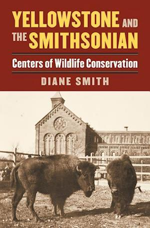 Bog, paperback Yellowstone and the Smithsonian af Diane Smith