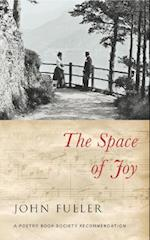 The Space of Joy af John Fuller