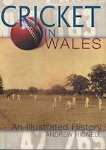 Cricket in Wales