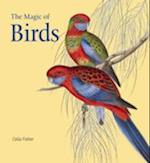 The Magic of Birds