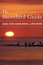 Shorebirds (ID Guide)