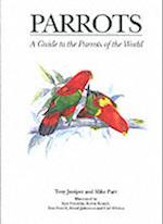 Parrots (Helm Identification Guides)