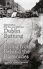 Dublin Burning