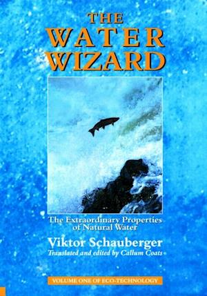 Water Wizard - The Extraordinary Properties of Natural Water