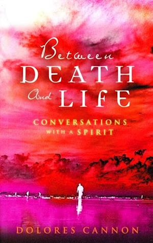 Between Death and Life - Conversations with a Spirit af Dolores Cannon