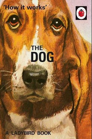 How it Works: The Dog af Jason Hazeley, Joel Morris