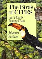 The Birds of Cites and How to Identify Them