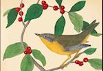 Audubon Holiday Half Notecards af New York Public Library