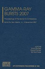 Gamma-Ray Bursts 2007