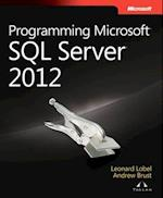 Programming Microsoft SQL Server 2012 (Developer Reference Paperback)