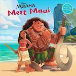 Meet Maui (Moana)