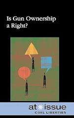 Is Gun Ownership a Right? (At Issue (Library))