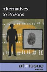Alternatives to Prisons (At Issue (Paperback))