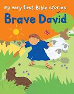 Brave David af Lois Rock, Alex Ayliffe