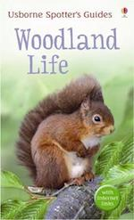 Woodland life (Spotter's Guide)