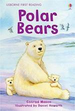 Polar Bear (Usborne First Reading, nr. 4)
