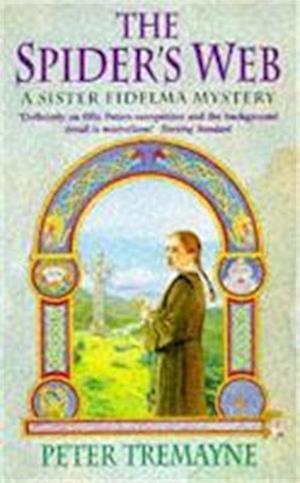 The Spider's Web (Sister Fidelma Mysteries Book 5)