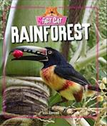 Fact Cat: Habitats: Rainforest af Izzi Howell