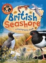 Nature Detective: British Seashore