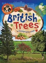 Nature Detective: British Trees