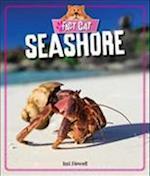 Seashore (Fact Cat Habitats)
