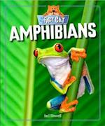 Fact Cat: Animals: Amphibians