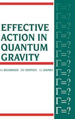 Effective Action in Quantum Gravity