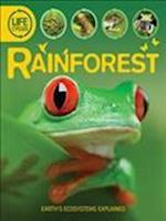Life Cycles: Rainforest (Lifecycles)