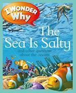 I Wonder Why the Sea Is Salty (I Wonder Why)