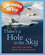 I Wonder Why There's a Hole in the Sky and Other Questions About the Environment (I Wonder Why)