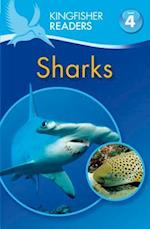 Sharks (Kingfisher Readers: Level 4)