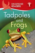 Tadpoles and Frogs (Kingfisher Readers, Level 1)