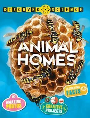 Bog, paperback Animal Homes af Angela Wilkes