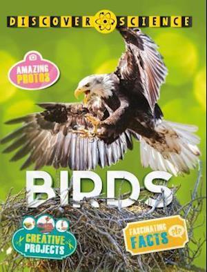 Bog, paperback Birds af Nicola Davies