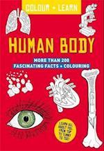 Colour + Learn: Human Body (Colour & learn)