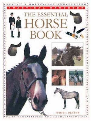 Bog, paperback The Essential Horse Book af Judith Draper