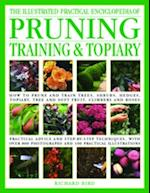 The Illustrated Practical Encyclopedia of Pruning, Training & Topiary