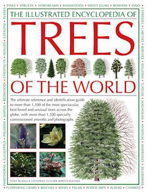 Bog, hardback The Illustrated Encyclopedia of Trees of the World af Tony Russell