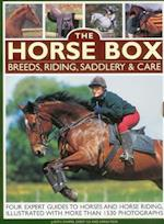 Horse Box: Breeds, Riding, Saddlery & Care