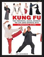 Kung Fu af Fay Goodman