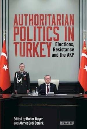 Authoritarian Politics in Turkey