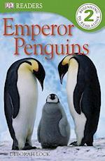 Emperor Penguins af Deborah Lock
