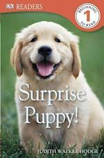 Surprise Puppy! (DK Readers. Level 1)