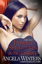 Power, Seduction & Scandal (D C Novels)