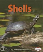 Shells (First Step Nonfiction)