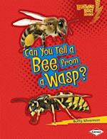 Can You Tell a Bee from a Wasp? (Lightning Bolt Books)