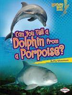 Can You Tell a Dolphin from a Porpoise? (Lightning Bolt Books)