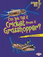 Can You Tell a Cricket from a Grasshopper? (Lightning Bolt Books)