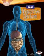Your Digestive System (Searchlight Books)